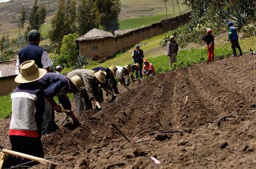 La capacidad de abastecimiento alimentario ha sido debilitada por el conflicto.