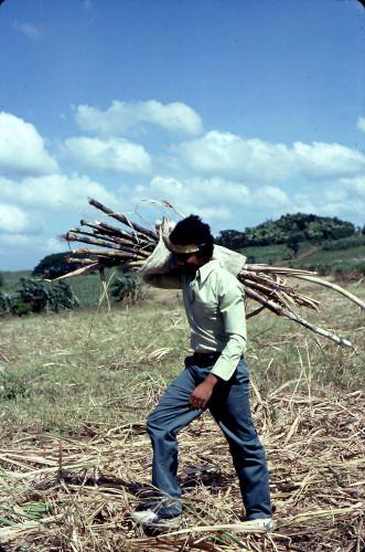 Karl Flecker, como trabajador migrante en Filipinas