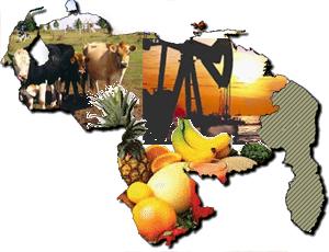 economia-venezolana-2012