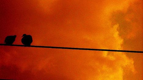 Foto: Luz Adriana Villa A. via photopin cc