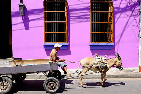 Foto: Man with donkey - Santa Marta, Colombia via photopin (license)