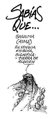 WAYU CALARCA 2791