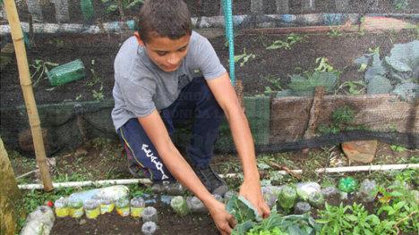 En la escuela de Naranjal los niños se familiarizan con el trabajo agrícola.